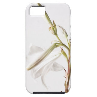 White Lilly iPhone 5 Cover