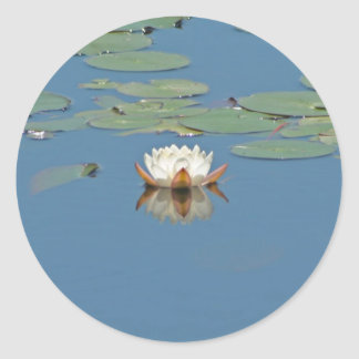 White Lilly Pad Classic Round Sticker