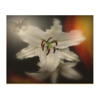 """WHITE LILY AND BUTTERFLY"" 10X8 SOFT PHOTOGRAPH WOOD WALL ART"