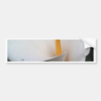 White Lily Bumper Sticker