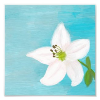 White Lily Digital Painting Photo Print