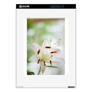 White Lily Flower Fully Open Skin For The iPad