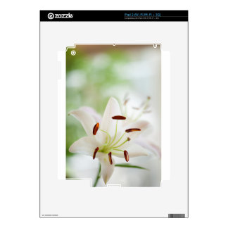 White Lily Flower Fully Open Skins For iPad 2