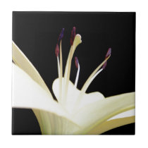 White Lily Flower Lilies Flowers Photo Ceramic Tile