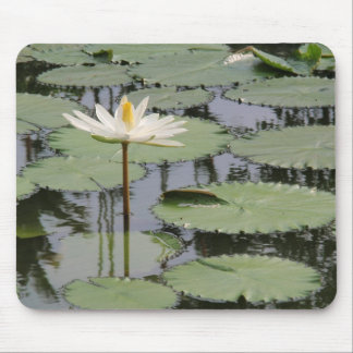 White Lily Lotus Mouse Pad