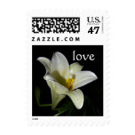 White Lily Love Postage