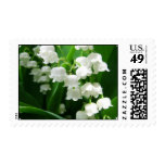White Lily of the Valley  Postage Stamp