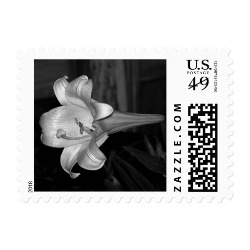 White Lily Postage Stamps