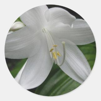 White Lily Round Stickers