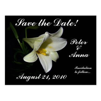 White Lily Save the Date Postcard