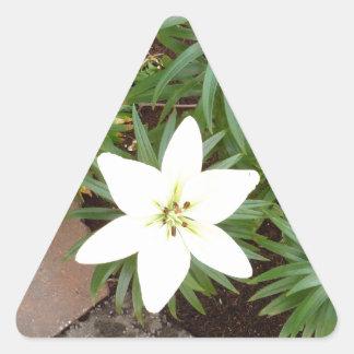 White Lily Triangle Sticker