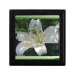 White Lily With Decorative Border Jewelry Boxes