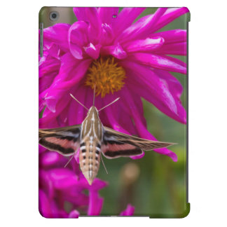 White-lined sphinx moth feeds on flower nectar 2 iPad air cases