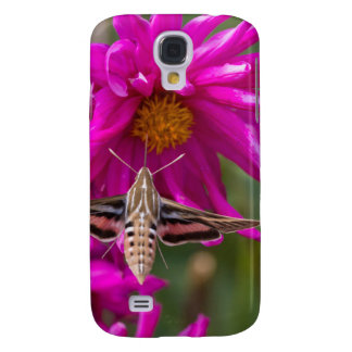 White-lined sphinx moth feeds on flower nectar 2 galaxy s4 cover