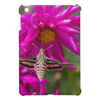 White-lined sphinx moth feeds on flower nectar 2 iPad mini covers