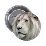 White lion buttons