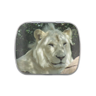 White Lion Jelly Belly Candy Tin
