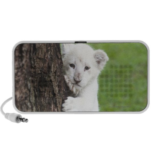 White lion cub hiding behind a tree. mini speaker