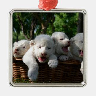 White Lion Cubs In A Basket  Belogorsk, Crimea Metal Ornament