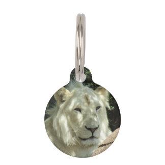 White Lion Pet Nametags