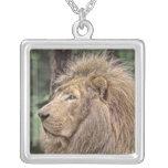 White Lion Necklaces