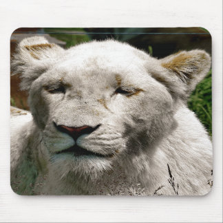 WHITE LIONS MOUSE PADS