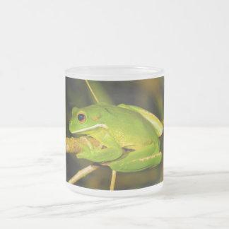 White Lipped Tree Frog Litoria Infrafrenata Frosted Glass Coffee Mug