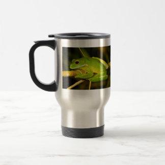 White Lipped Tree Frog Litoria Infrafrenata Travel Mug