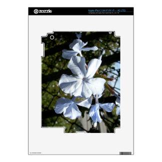 White Lobelia Skins For iPad 3