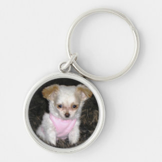 White Long Haired Chihuahua Keychain