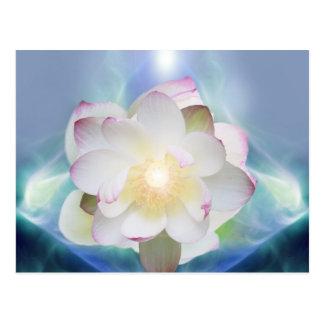 White lotus flower in blue crystal postcard
