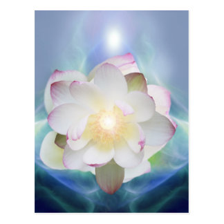 White lotus flower in blue crystal postcard