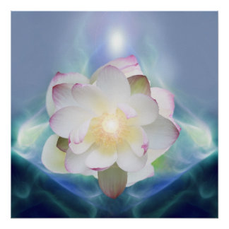 White lotus flower in blue crystal poster