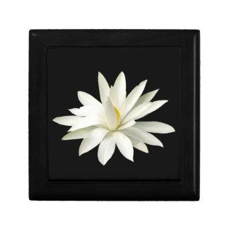 White lotus jewelry box