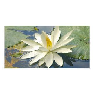 White lotus photo card