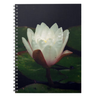 White Macro Lotus Flower Note Book
