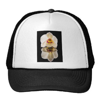 White Macro Orchid Mesh Hats