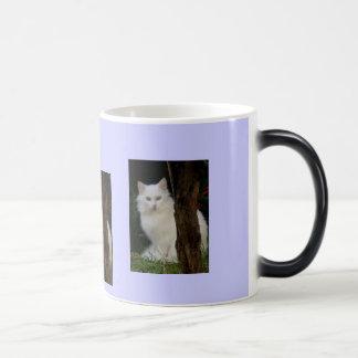 white magic cat magic mug
