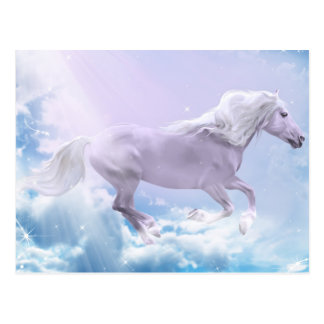 White Magic Mare Postcard