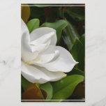 "White Magnolia<br><div class=""desc"">Blooming white magnolia flower blossom.</div>"