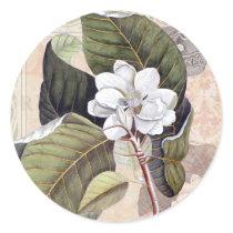 White Magnolia Blossom Vintage Botanical Classic Round Sticker