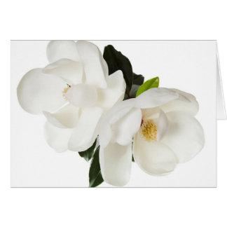 White Magnolia Flower Magnolias Floral Flowers Card