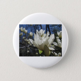 White Magnolia in North Carolina Button