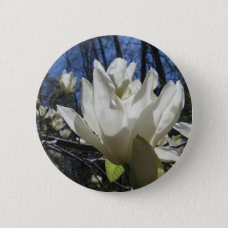White Magnolia in North Carolina Pinback Button