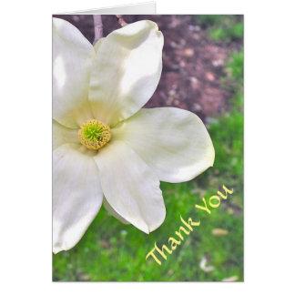 WHITE MAGNOLIA/THANK YOU/PHOTOG./CUSTOMIZABLE TEXT CARD