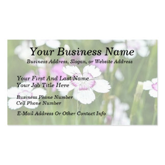 White Maiden Pinks Double-Sided Standard Business Cards (Pack Of 100)