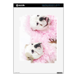 White male and female skin for iPad 3