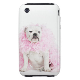 White male dog with pink boa iPhone 3 tough case