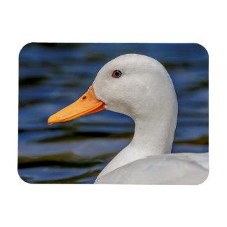 White Mallard Duck Magnet