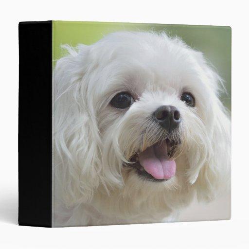 White maltese dog sticking out tongue 3 ring binder
